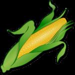 corn-155613_640